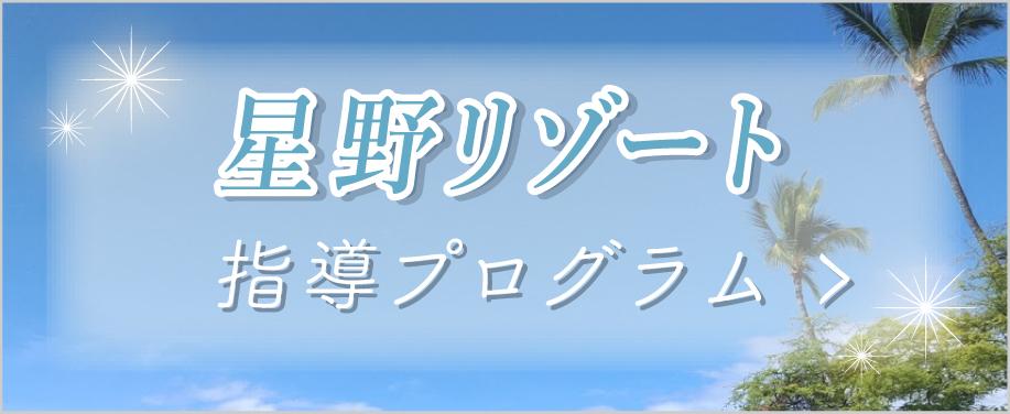 星野リゾートプログラム